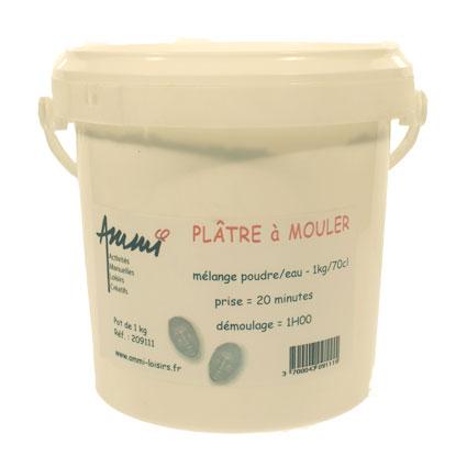 Plâtre à mouler -pot 1kg-